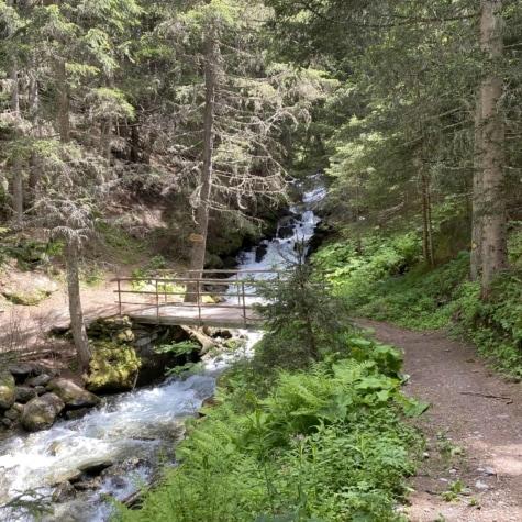 Pfammatbrücke Unterbäch im Sommer