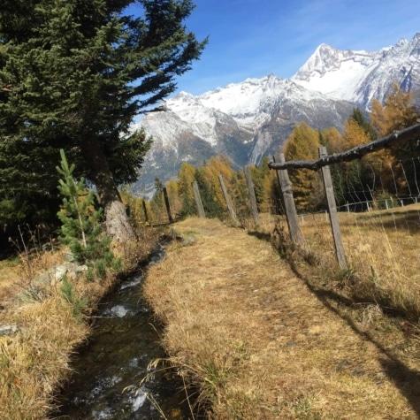Eischlersuon Herbst