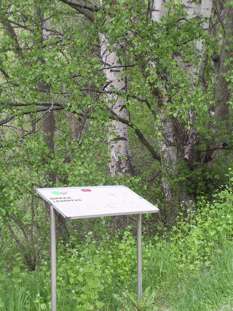 Birkenlehrpfad Bürchen