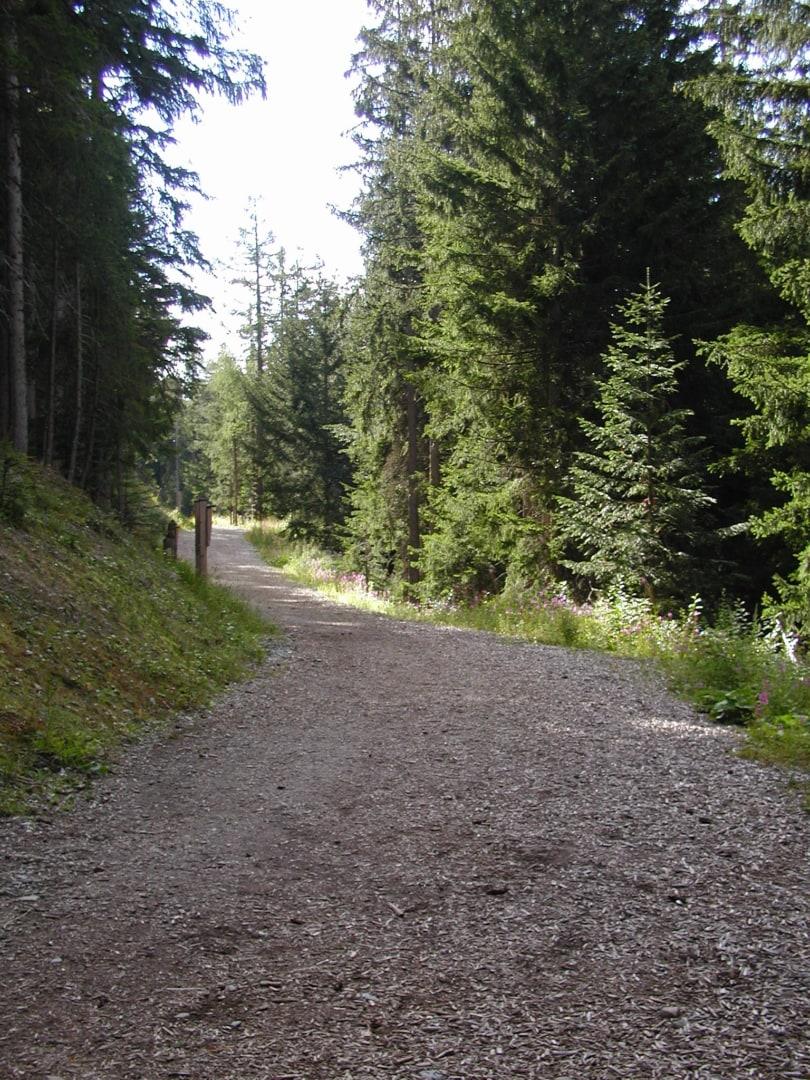 Eichhörnchenweg